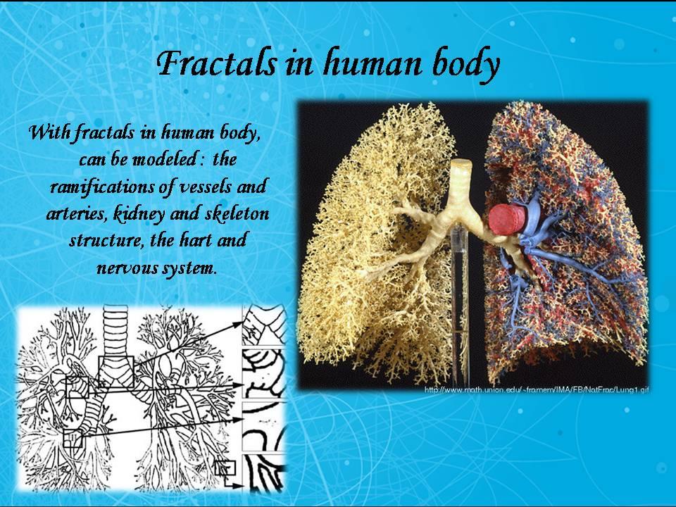 Fractals Fractals1 - MART